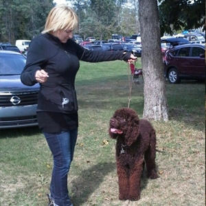 experienced dog trainer long island